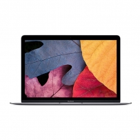 Apple MacBook MK4N2 with Retina Display - 12 Inch Laptop
