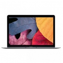 Apple MacBook MK4M2 with Retina Display - 12 Inch Laptop